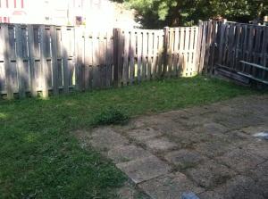 backyardafter1
