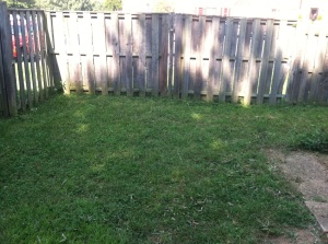 backyardafter2